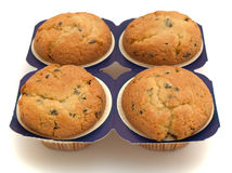 Four muffins. Isolated on the white background Stock Image
