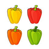 Four multicolored pepper. Four multicolored pepper on a white background. Cartoon style. Vector illustration Royalty Free Stock Images