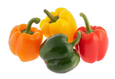 Four multicoloured bell peppers Stock Photos