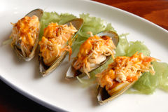 Four mussels Stock Photography