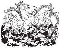 Four mythological seahorses. Hippocampus Black and white illustration Stock Photo