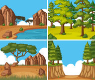 Four nature scenes at day time. Illustration Stock Photo