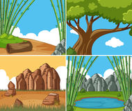 Four nature scenes at day time. Illustration Royalty Free Stock Photos