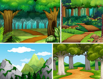 Four nature scenes with forest and mountain Stock Images