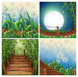 Four nature scenes with wooden bridge Royalty Free Stock Photo