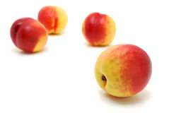Four nectarines Royalty Free Stock Photography