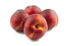 Four nectarines Royalty Free Stock Photos