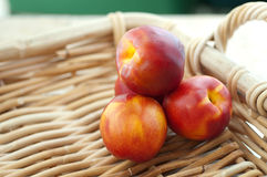 Four Nectarines in Basket Royalty Free Stock Photos