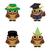 Four nice owls on white background Stock Images