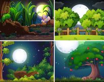 Four night scenes of the forest and park. Illustration Stock Photography