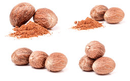 Four nutmeg and powder isolated on white background. Set or collection Royalty Free Stock Photography