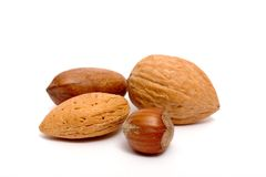 Four nuts Stock Photo