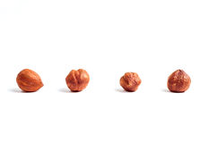 Four nuts Royalty Free Stock Photography