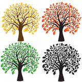Four oak with yellow, red, green foliage. Ebony. Four oak with yellow, red and green foliage. Ebony Stock Image