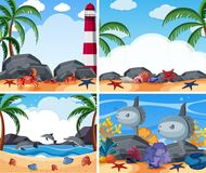 Four ocean scenes with animals and beach Royalty Free Stock Image