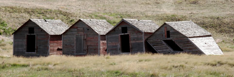 Four Old Barns Panorama. Four aging, old wooden barns falling over in the country Stock Image