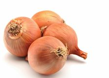 Four onions Royalty Free Stock Photos