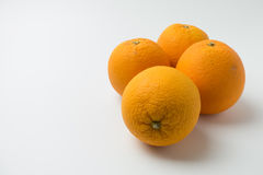 Four orange on white background Stock Image