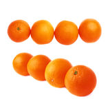 Four oranges fruits composition isolated over the white background, set of different foreshortenings Royalty Free Stock Images