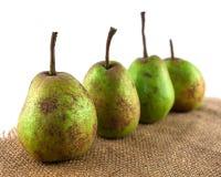 Four organic pears Stock Image