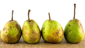 Four organic pears Stock Images