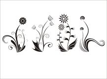 Four ornament flowers Royalty Free Stock Photography