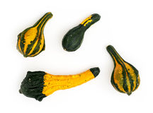 Four ornamental gourds isolated Royalty Free Stock Photography