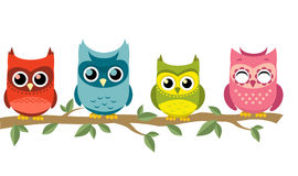 Four owls perching together. With red owl, blue owl, green and yellow owl, pink owl  illustration Royalty Free Stock Image