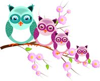Four owls on twig of tree Royalty Free Stock Images