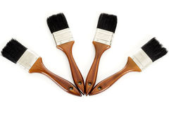 Four paintbrushes. Four clean paintbrushes fanned out against a white background Royalty Free Stock Images