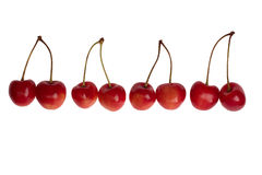 Four pairs of cherries. On white background Royalty Free Stock Image