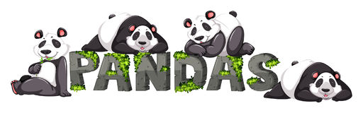 Four pandas by the zoo sign. Illustration Royalty Free Stock Photos