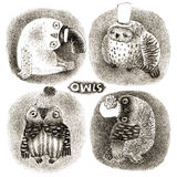 Four Pastel Owls in Funny Hats Royalty Free Stock Photos