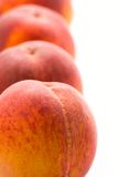 Four peaches Stock Image