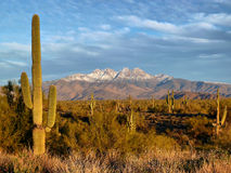 Four Peaks Sunset Royalty Free Stock Image