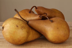 Four Pears. Close-up shot of for brown pears, shallow focus Royalty Free Stock Photo