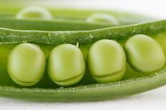 Free Four Peas In A Pod Stock Photo - 22117790