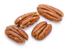 Four pecan nuts Stock Photography