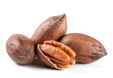 Four pecan nuts isolated on white background Royalty Free Stock Images