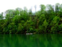 Four people on a canoe in a green environment Royalty Free Stock Image