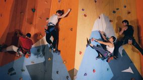 Sporting people on a modern climbing wall, close up. Four people climbing on a colored wall stock video footage