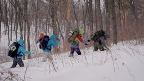 Four people in the expedition. The hike takes place in difficult conditions, people fall into snowdrifts. Around winter forest stock video