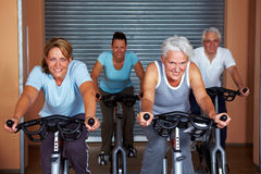 Four people in fitness bikes Royalty Free Stock Image