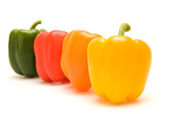 Four pepper Royalty Free Stock Photos