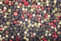 Four pepper blend Stock Photography