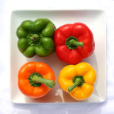 Four Peppers. On plate Royalty Free Stock Image
