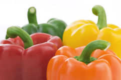 Four Peppers. Multi Colored Isolated On White Background Close Up royalty free stock photos