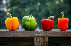 Four peppers on ledge royalty free stock photography