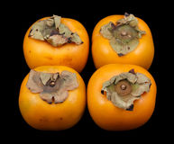 Four persimmon fruits Stock Photography