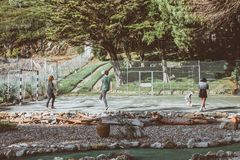 Four Person Playing Ball Surrounded by Trees royalty free stock photos